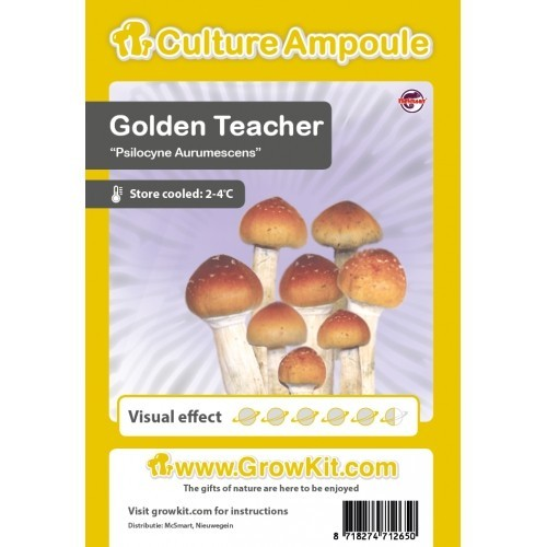 Golden Teacher sporeprint